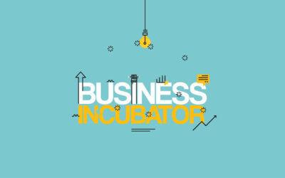 What's an incubator?